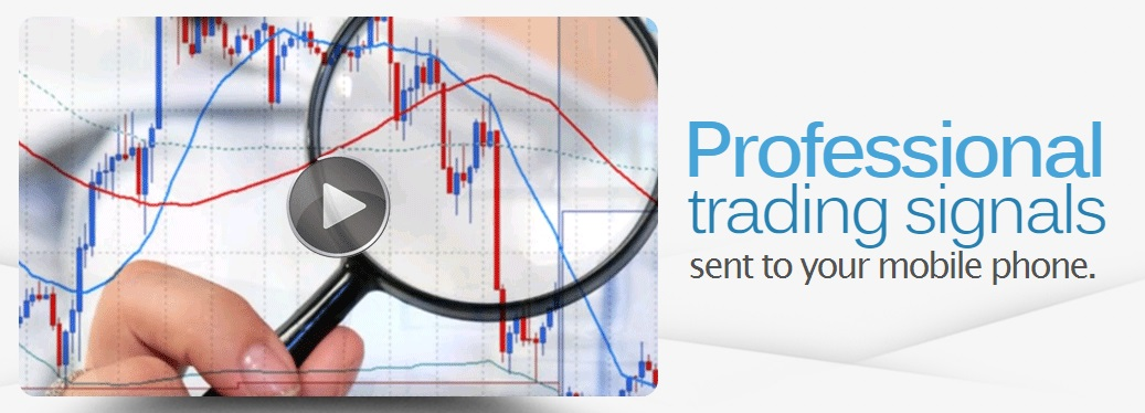 Binary options signal provider